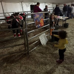 E at the jellystone petting zoo (1)