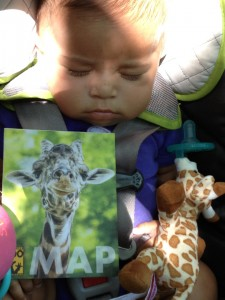 emerson and giraffe at the zoo entrance